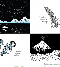 narwhals-sleeping-on-a-blanket-of-stars